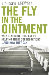 fly-in-the-ointment